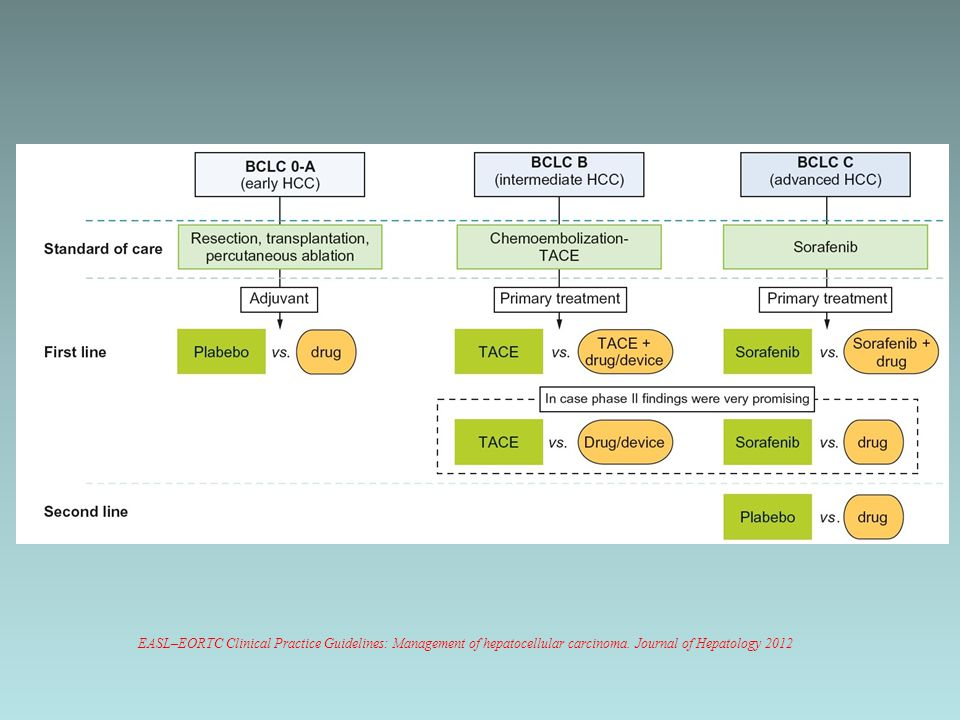 EASL–EORTC Clinical Practice Guidelines: Management of hepatocellular carcinoma.