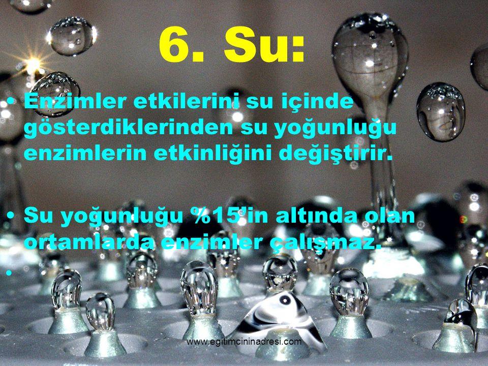 6. Su: Enzimler etkilerini su içinde gösterdiklerinden su yoğunluğu enzimlerin etkinliğini değiştirir.