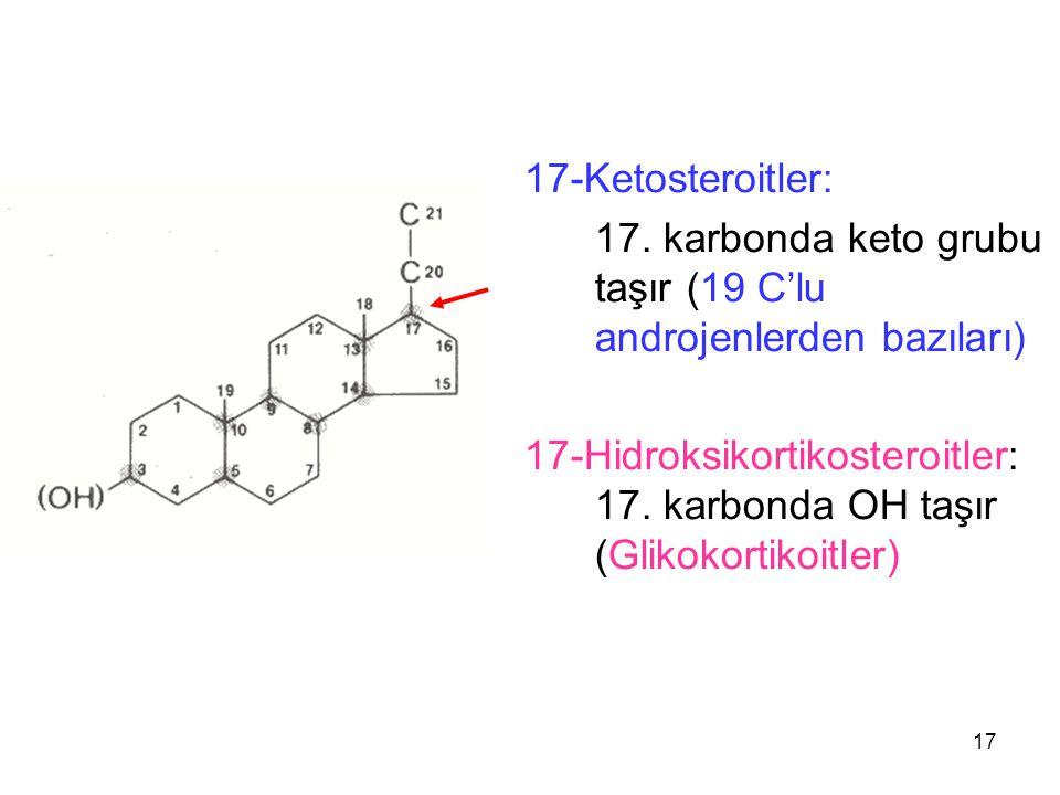 17-Ketosteroitler: 17. karbonda keto grubu taşır (19 C'lu androjenlerden bazıları)