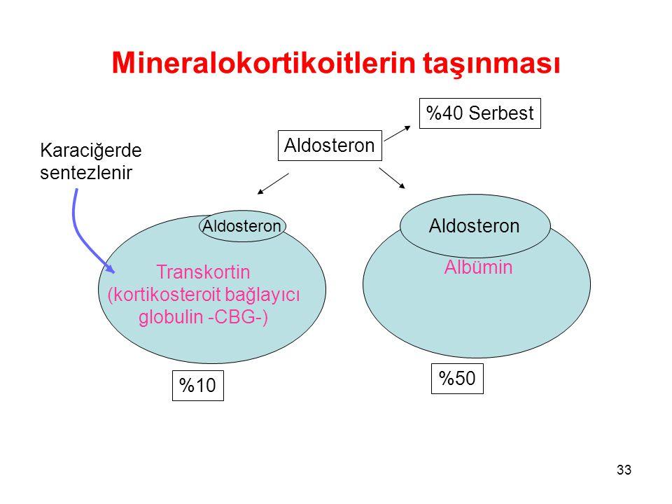 Mineralokortikoitlerin taşınması