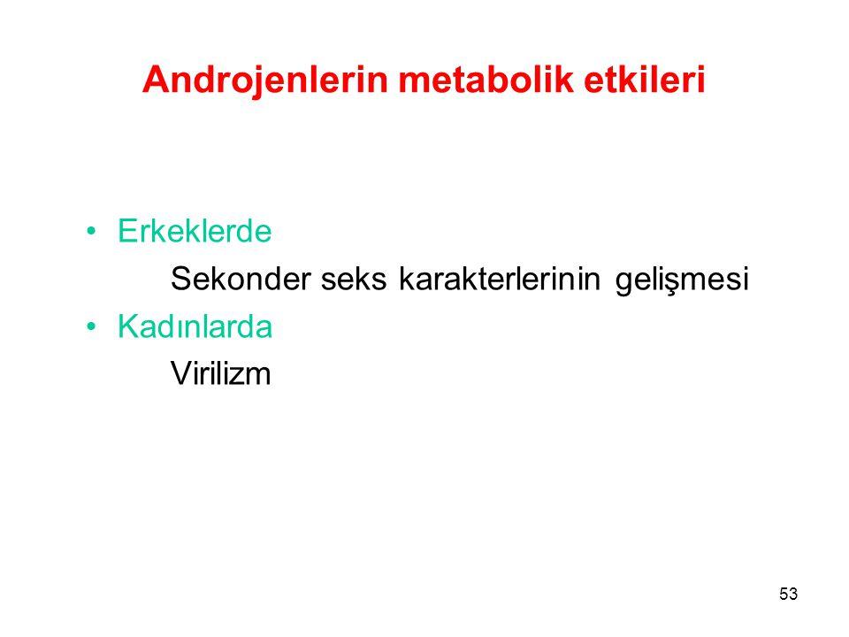 Androjenlerin metabolik etkileri