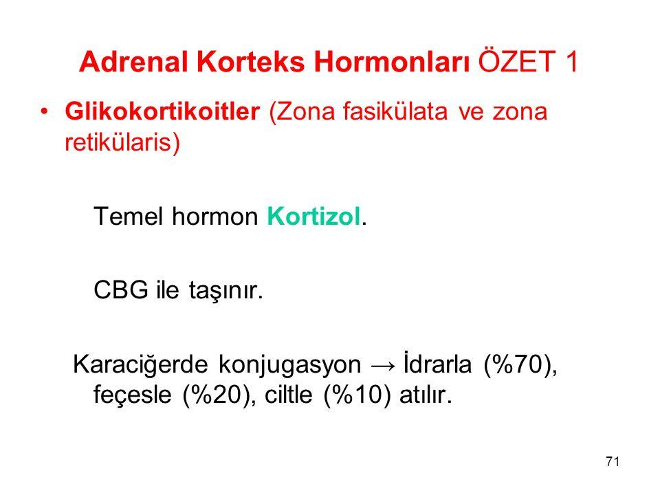 Adrenal Korteks Hormonları ÖZET 1