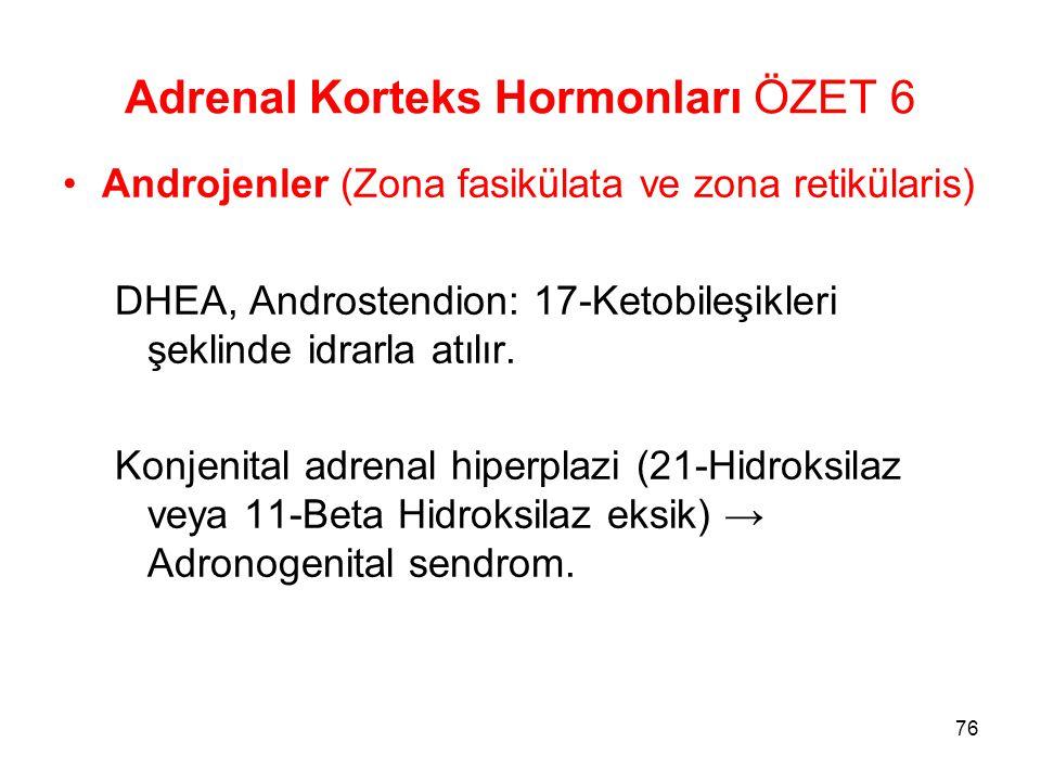 Adrenal Korteks Hormonları ÖZET 6