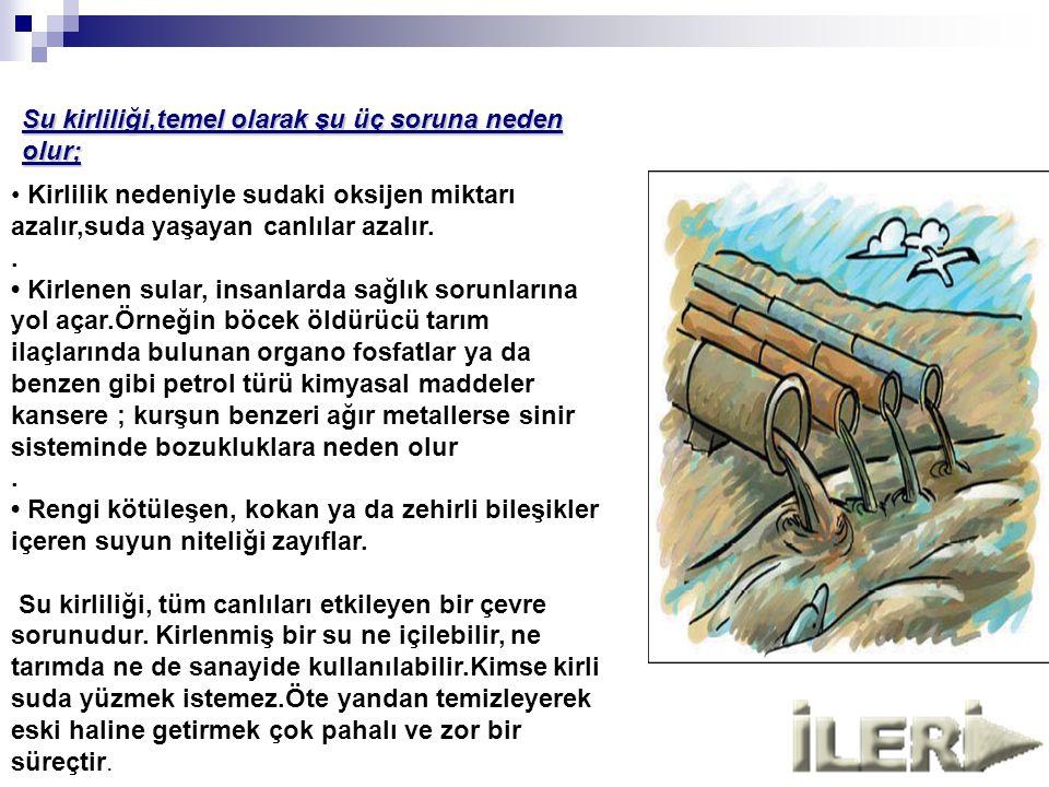 Su kirliliği,temel olarak şu üç soruna neden olur;