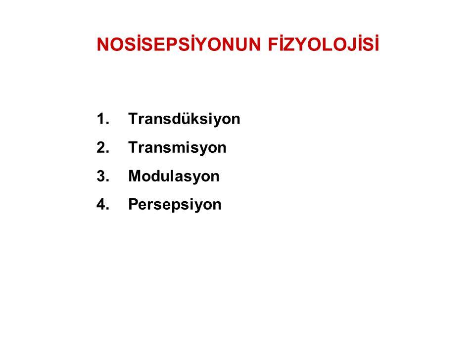 NOSİSEPSİYONUN FİZYOLOJİSİ