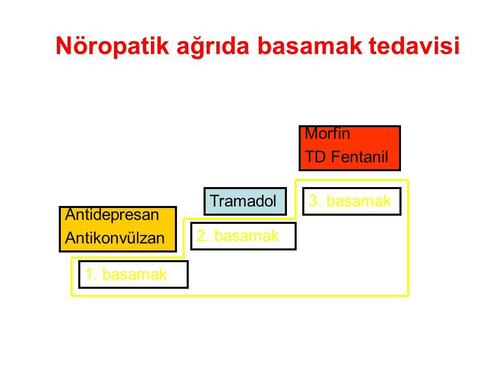 Nöropatik ağrıda basamak tedavisi
