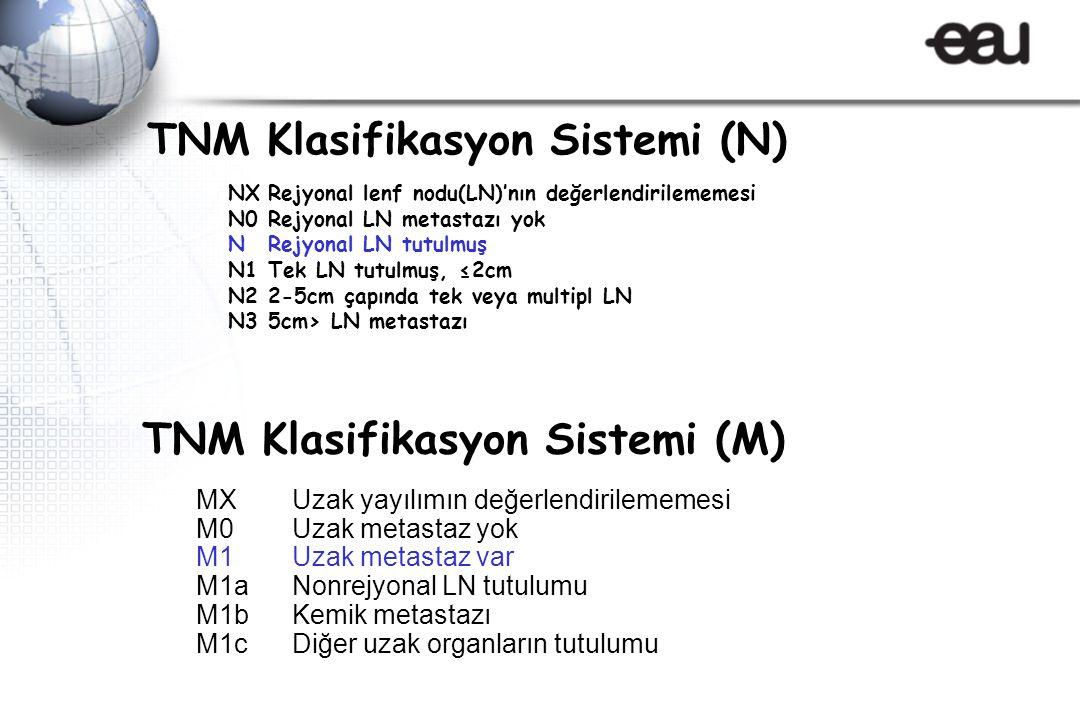 TNM Klasifikasyon Sistemi (N)