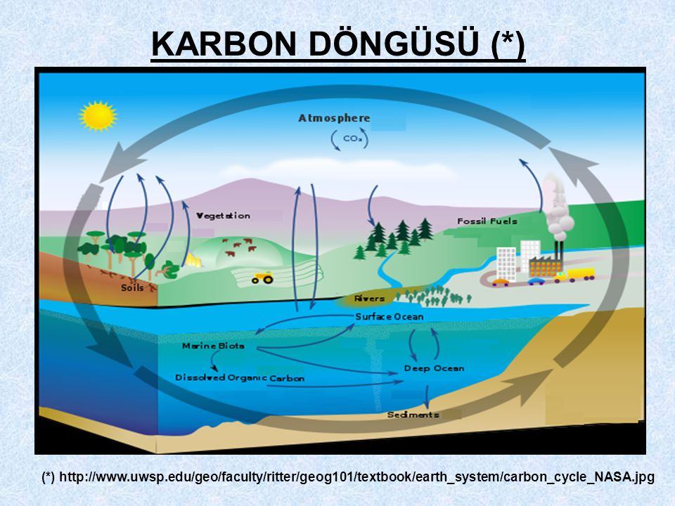 KARBON DÖNGÜSÜ (*) (*) http://www.uwsp.edu/geo/faculty/ritter/geog101/textbook/earth_system/carbon_cycle_NASA.jpg.