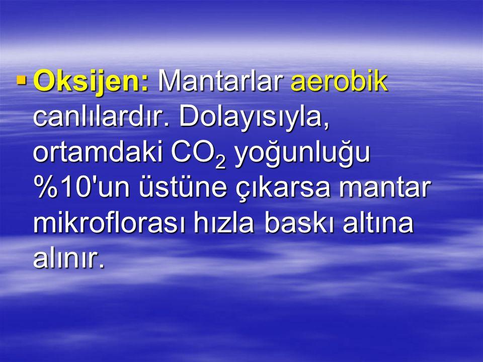 Oksijen: Mantarlar aerobik canlılardır