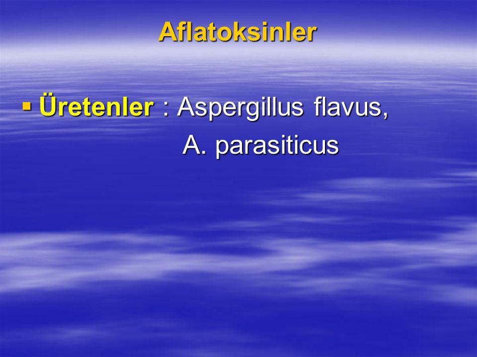 Aflatoksinler Üretenler : Aspergillus flavus, A. parasiticus