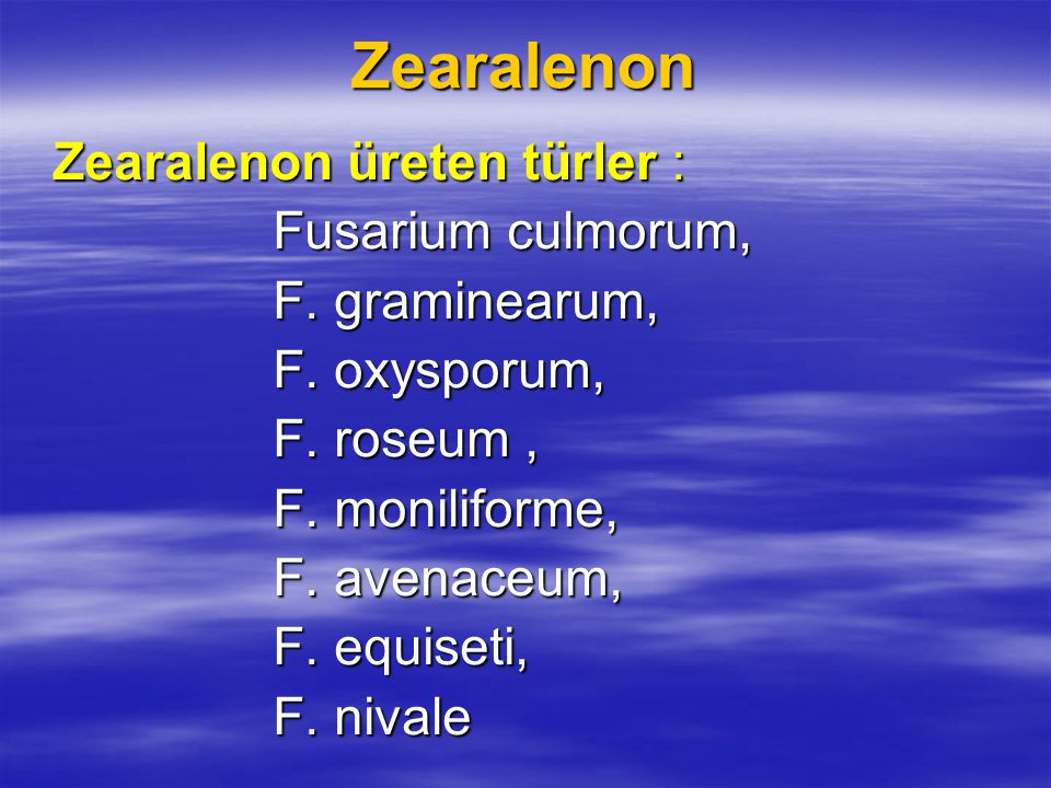Zearalenon Fusarium culmorum, F. graminearum, F. oxysporum,