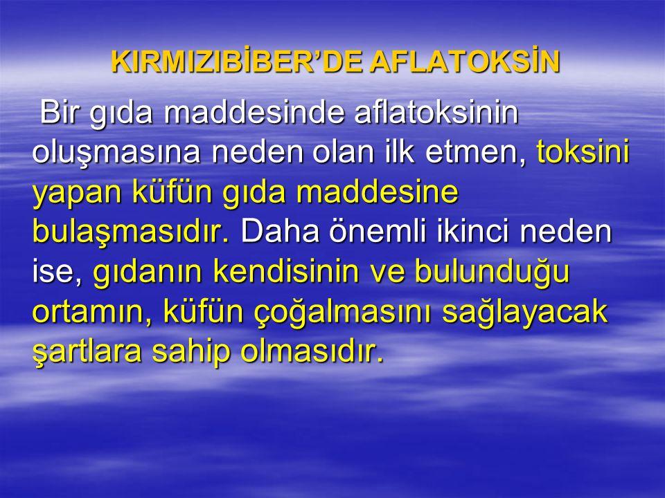 KIRMIZIBİBER'DE AFLATOKSİN