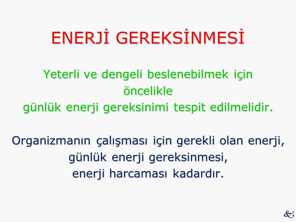 ENERJİ GEREKSİNMESİ