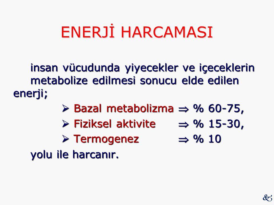 ENERJİ HARCAMASI