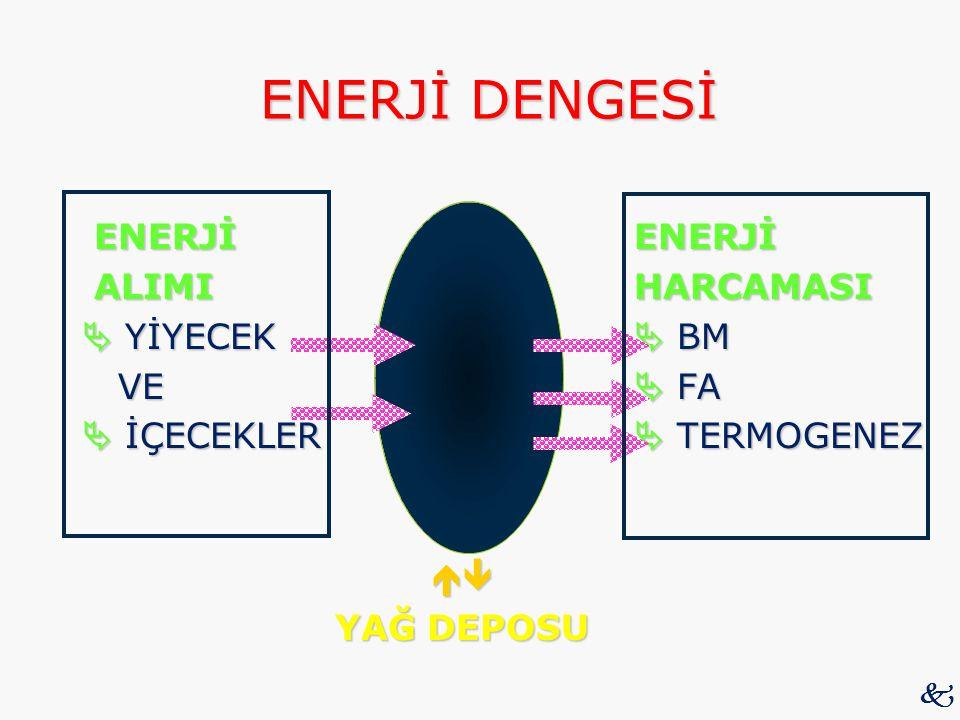 ENERJİ DENGESİ ENERJİ ENERJİ ALIMI HARCAMASI  YİYECEK  BM VE  FA  İÇECEKLER  TERMOGENEZ  YAĞ DEPOSU