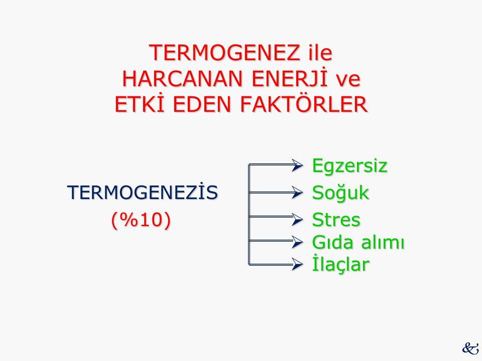 TERMOGENEZ ile HARCANAN ENERJİ ve ETKİ EDEN FAKTÖRLER