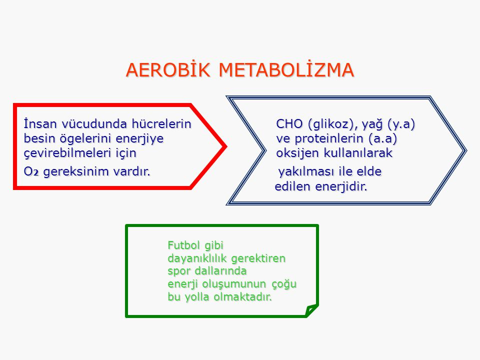 AEROBİK METABOLİZMA İnsan vücudunda hücrelerin CHO (glikoz), yağ (y.a)