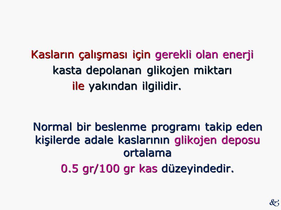 Kasların çalışması için gerekli olan enerji kasta depolanan glikojen miktarı ile yakından ilgilidir. Normal bir beslenme programı takip eden kişilerde adale kaslarının glikojen deposu ortalama 0.5 gr/100 gr kas düzeyindedir.