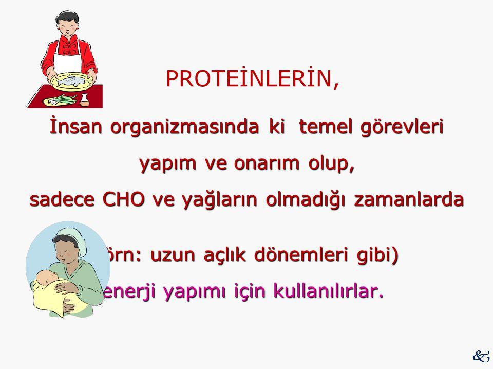 PROTEİNLERİN,