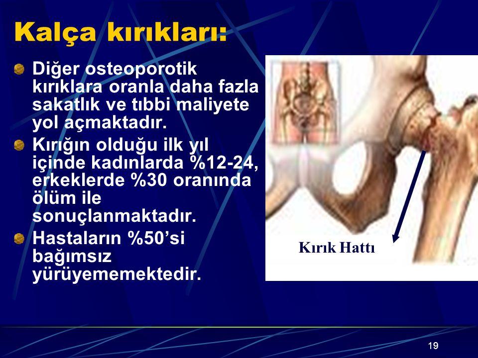 Kalça kırıkları: Diğer osteoporotik kırıklara oranla daha fazla sakatlık ve tıbbi maliyete yol açmaktadır.