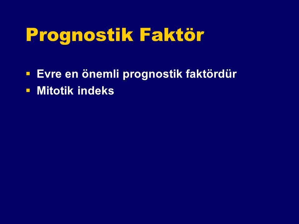Prognostik Faktör Evre en önemli prognostik faktördür Mitotik indeks