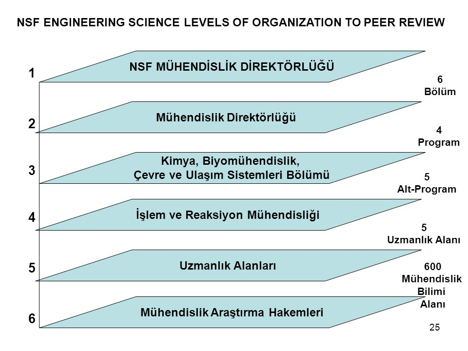 NSF ENGINEERING SCIENCE LEVELS OF ORGANIZATION TO PEER REVIEW