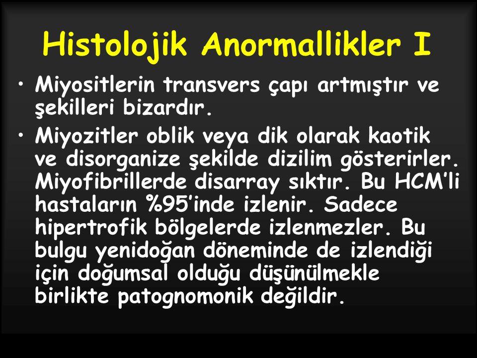 Histolojik Anormallikler I