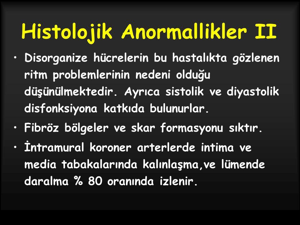 Histolojik Anormallikler II