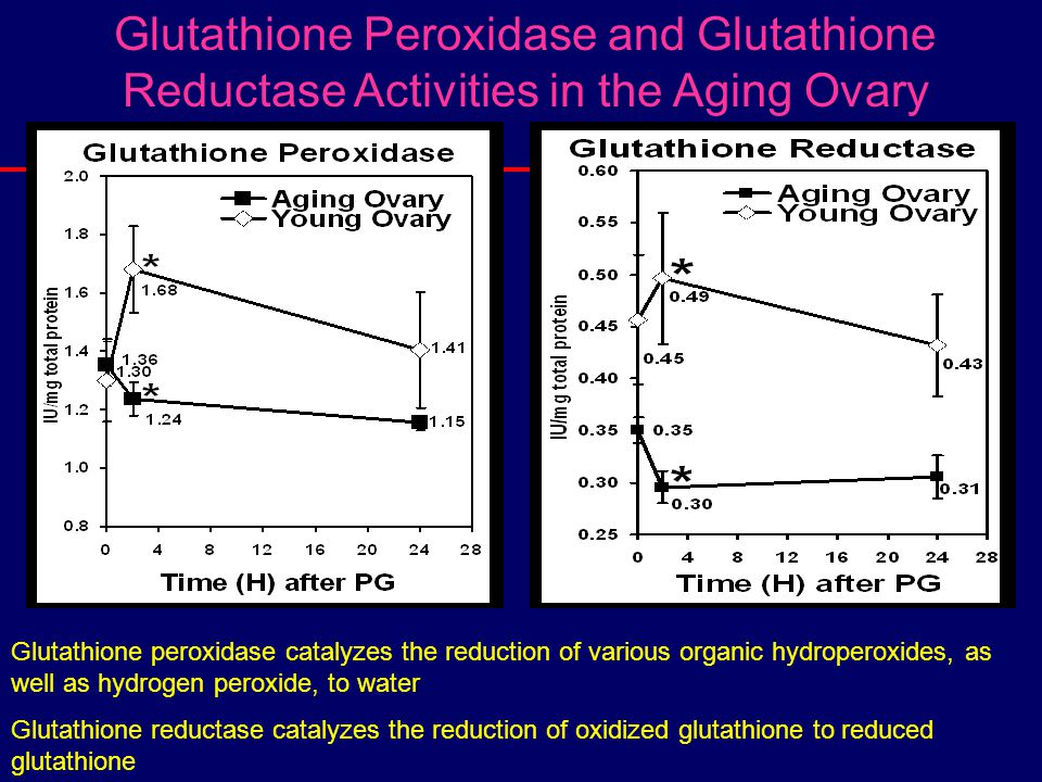 Glutathione Peroxidase and Glutathione Reductase Activities in the Aging Ovary