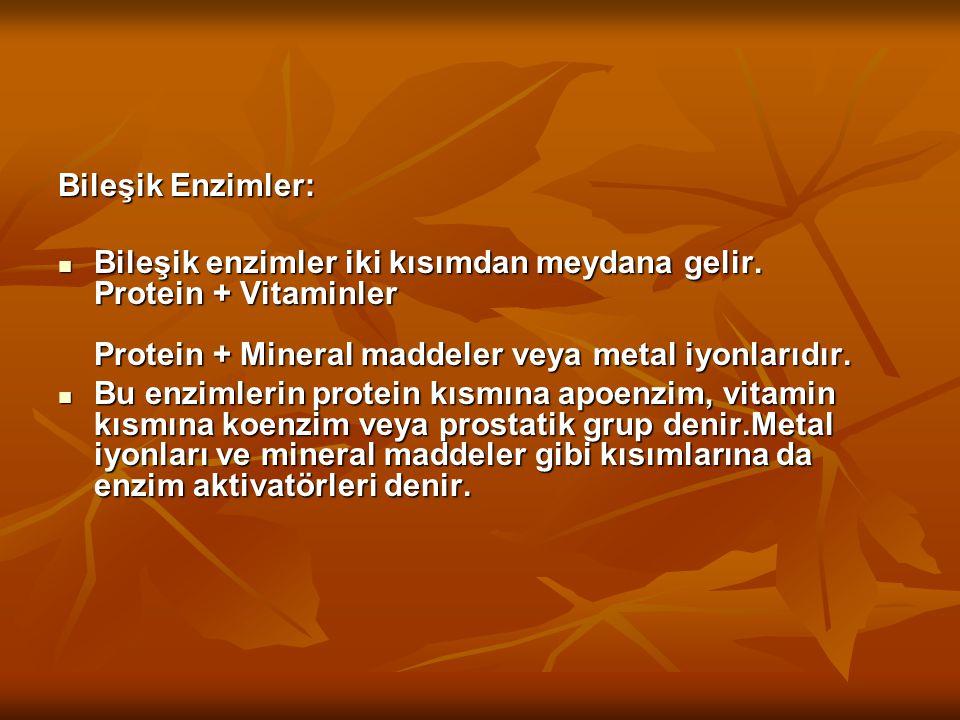 Bileşik Enzimler: Bileşik enzimler iki kısımdan meydana gelir. Protein + Vitaminler Protein + Mineral maddeler veya metal iyonlarıdır.