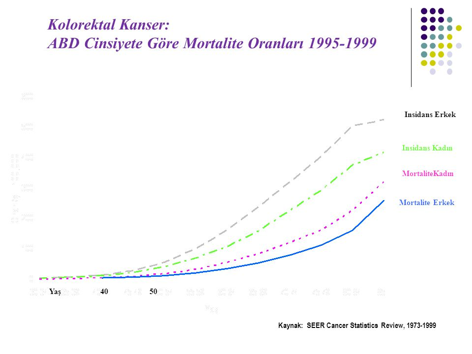 ABD Cinsiyete Göre Mortalite Oranları 1995-1999