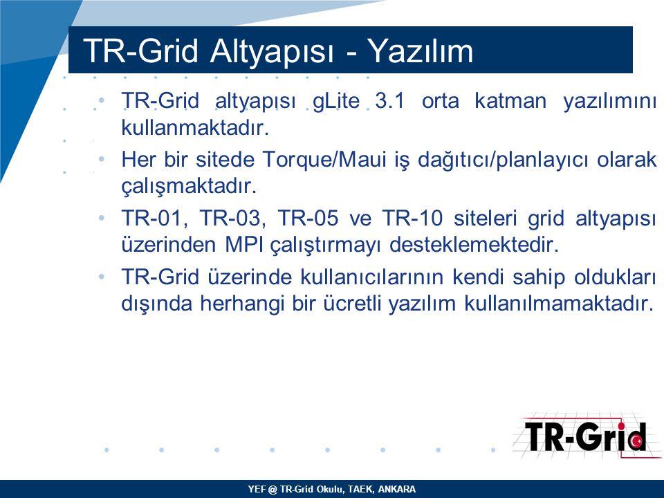 TR-Grid Altyapısı - Yazılım