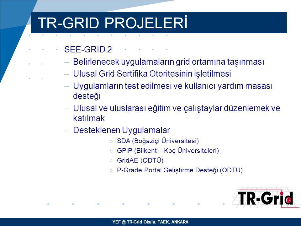 TR-GRID PROJELERİ SEE-GRID 2