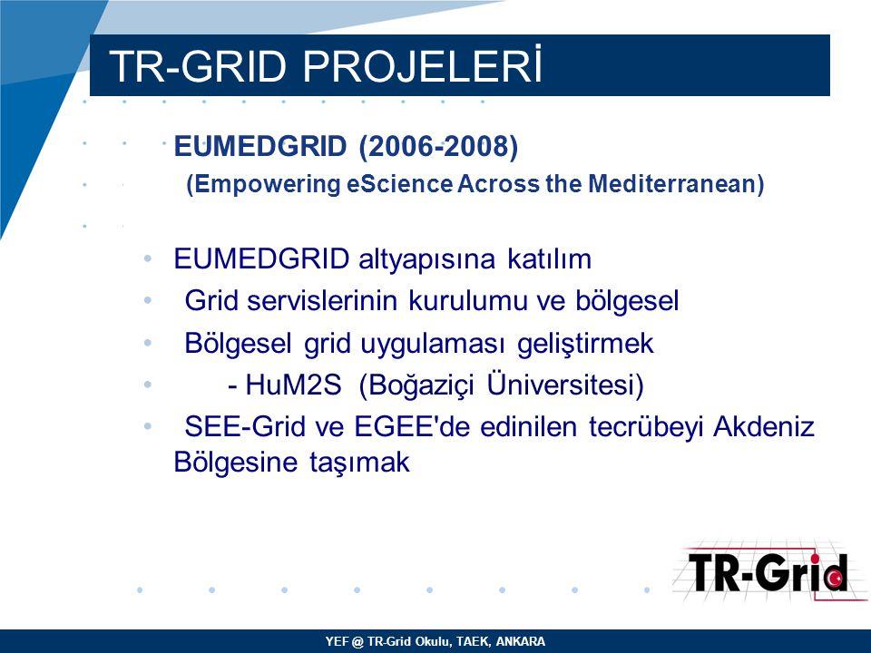 TR-GRID PROJELERİ EUMEDGRID (2006-2008) EUMEDGRID altyapısına katılım