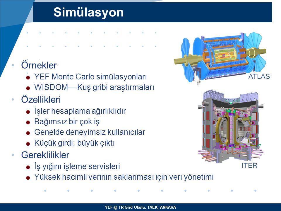 Simülasyon Örnekler Özellikleri Gereklilikler