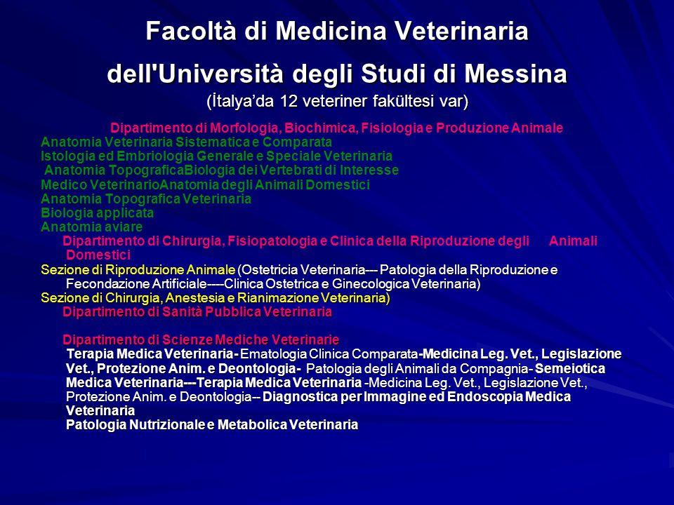 Facoltà di Medicina Veterinaria dell Università degli Studi di Messina (İtalya'da 12 veteriner fakültesi var)