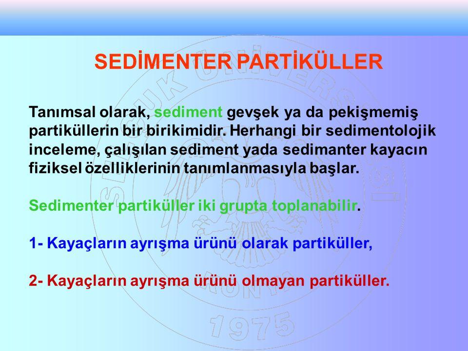 SEDİMENTER PARTİKÜLLER