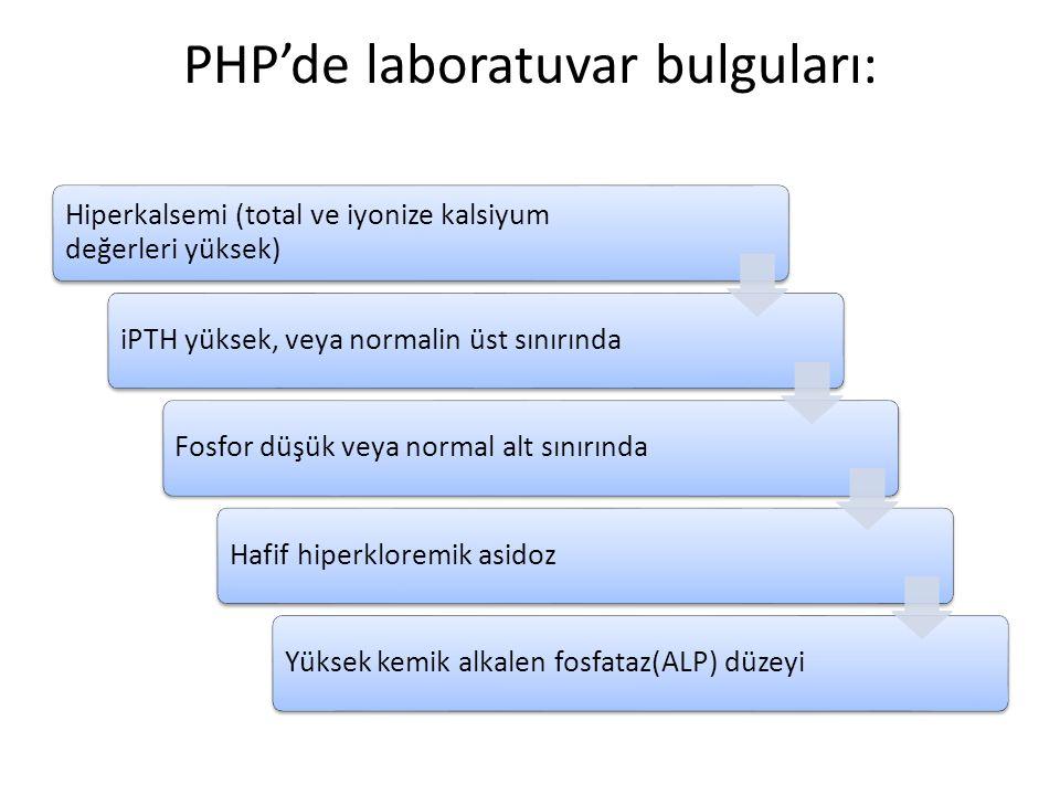 PHP'de laboratuvar bulguları: