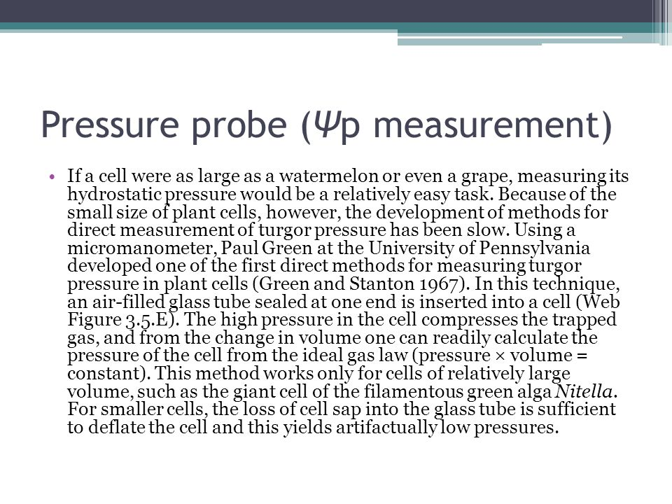 Pressure probe (Ψp measurement)