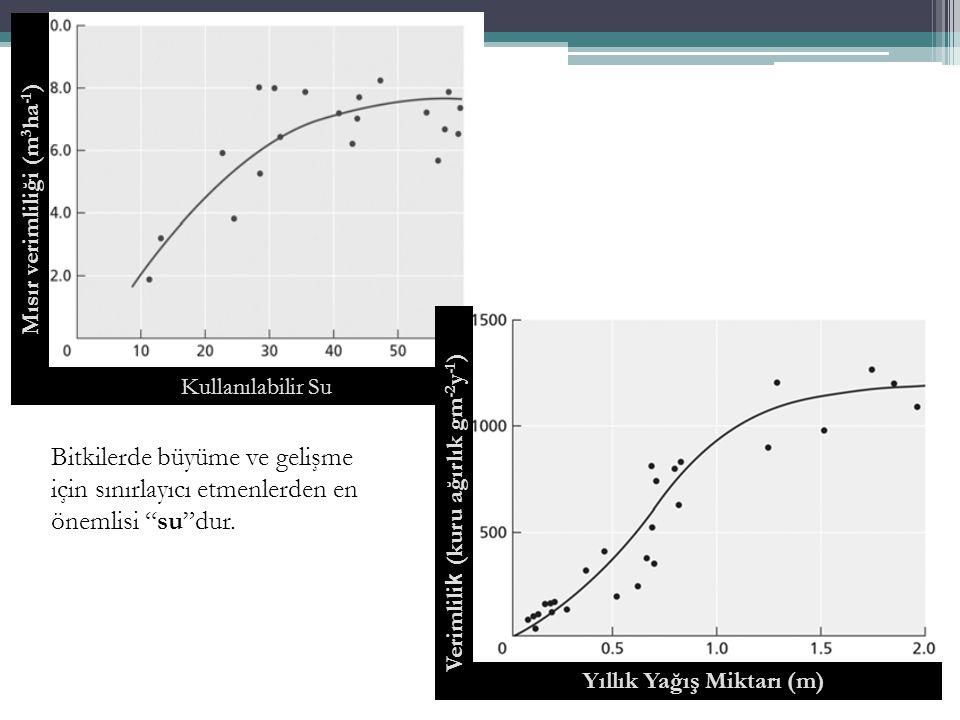 Mısır verimliliği (m3ha-1) Yıllık Yağış Miktarı (m)