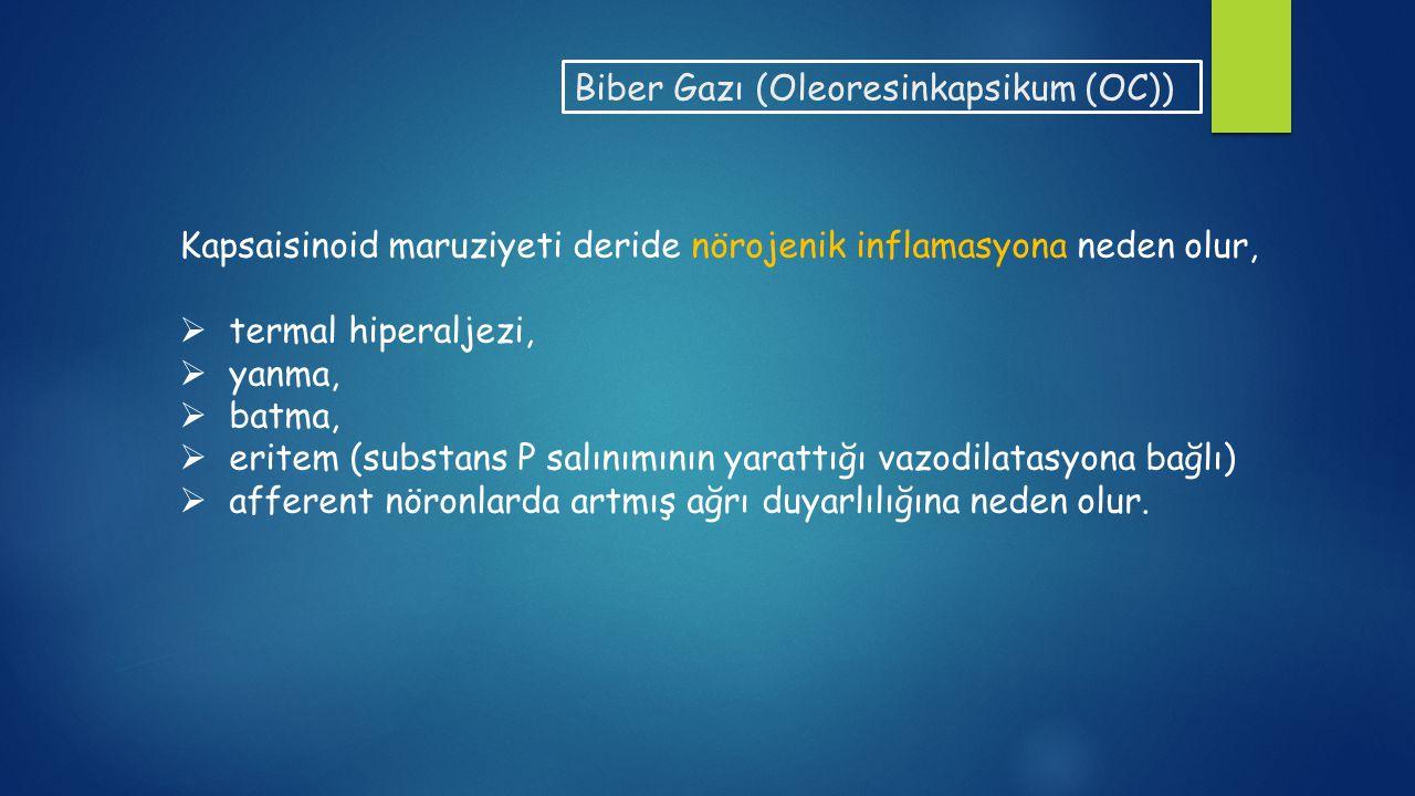 Biber Gazı (Oleoresinkapsikum (OC))