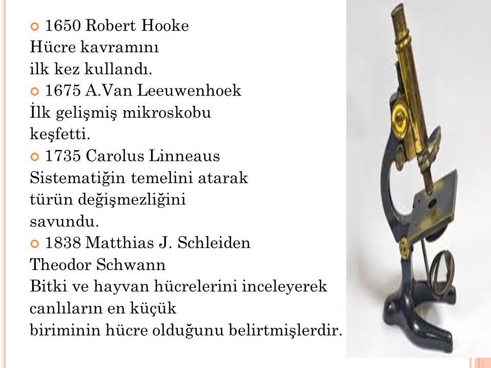 1650 Robert Hooke Hücre kavramını. ilk kez kullandı. 1675 A.Van Leeuwenhoek. İlk gelişmiş mikroskobu.