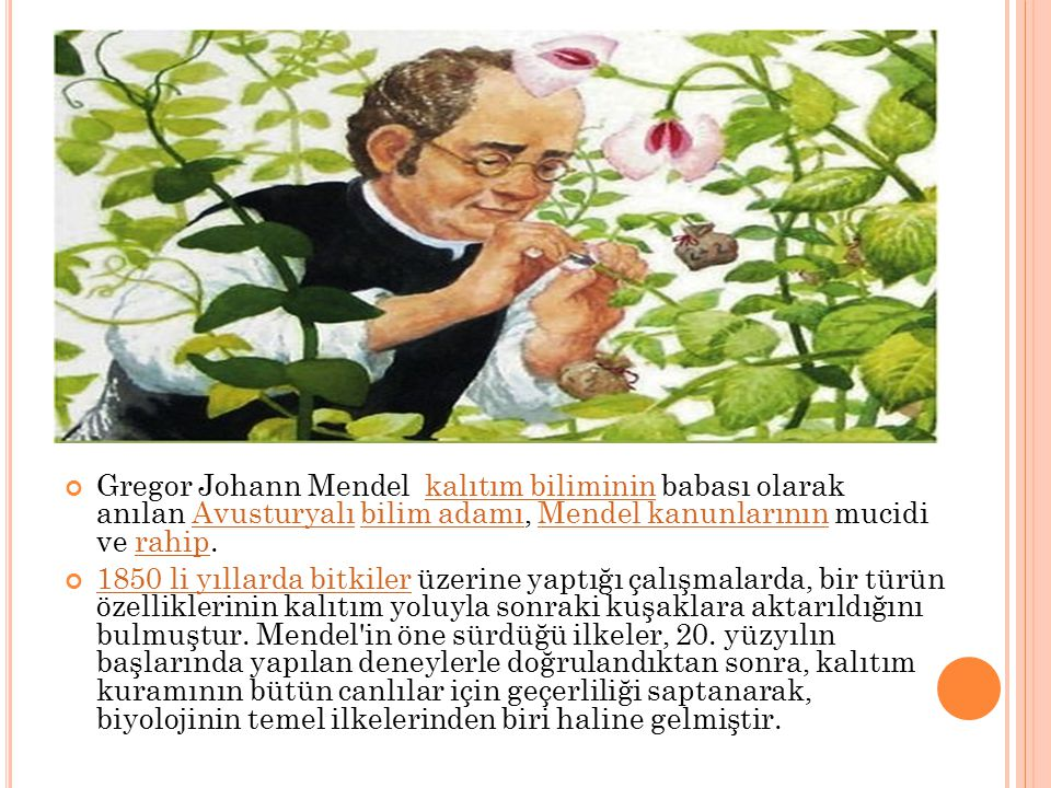 Gregor Johann Mendel kalıtım biliminin babası olarak anılan Avusturyalı bilim adamı, Mendel kanunlarının mucidi ve rahip.