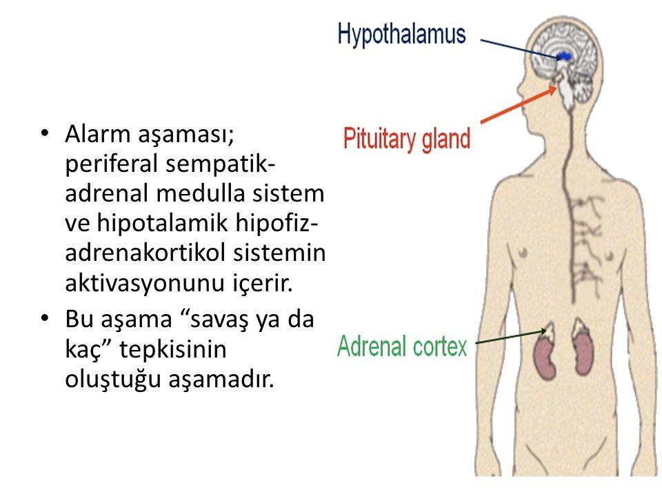 Alarm aşaması; periferal sempatik-adrenal medulla sistem ve hipotalamik hipofiz-adrenakortikol sistemin aktivasyonunu içerir.