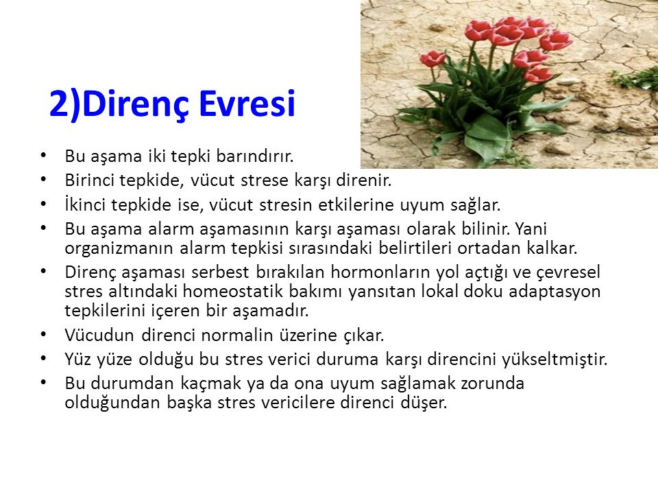 2)Direnç Evresi Bu aşama iki tepki barındırır.