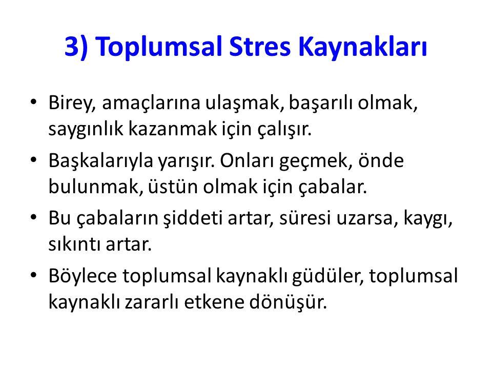 3) Toplumsal Stres Kaynakları