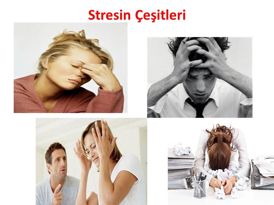 Stresin Çeşitleri