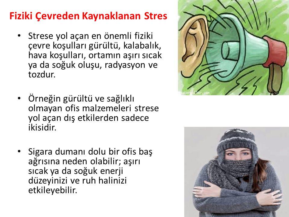 Fiziki Çevreden Kaynaklanan Stres