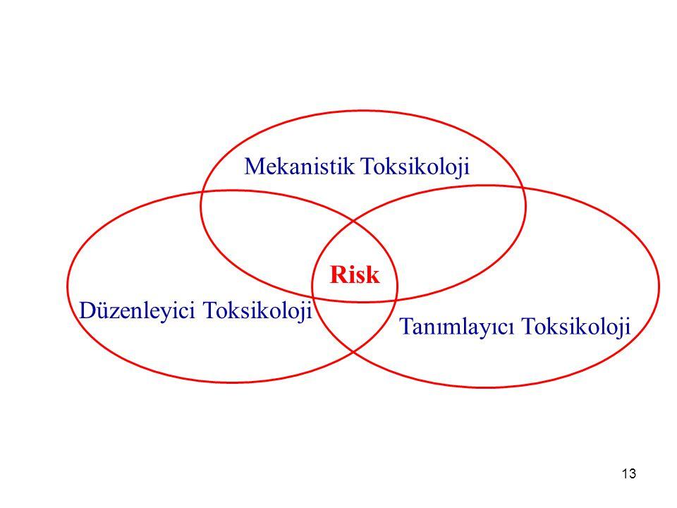 Risk Mekanistik Toksikoloji Düzenleyici Toksikoloji