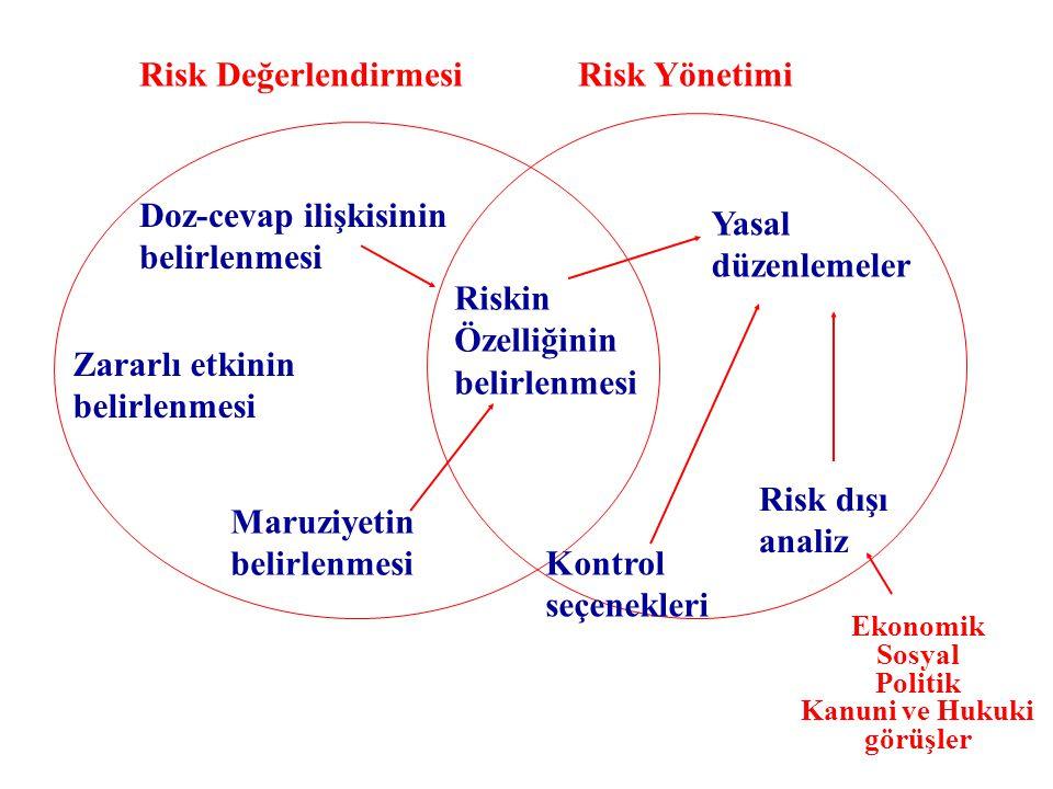 Risk Değerlendirmesi Risk Yönetimi